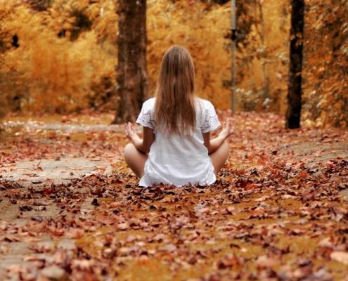 Neue Energie tanken mit Meditation im Herbst.