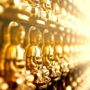 Der edle achtfache Pfad - Lehre von Buddha