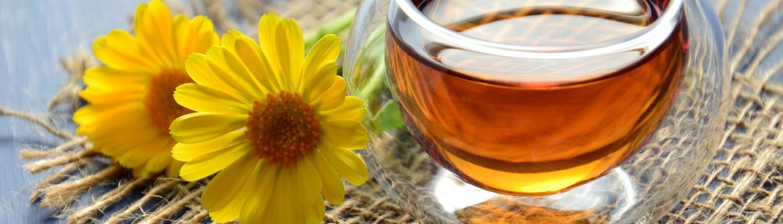 Fastenzeit - Stärke deinen Willen mit Meditation - Zen Lounge