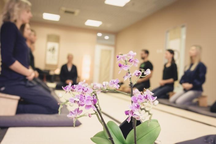 Ein Morgen wie im Zen-Kloster - Zen Event