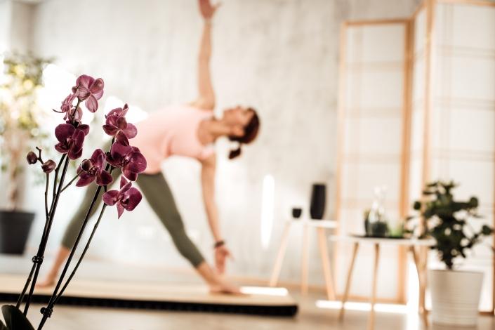Kräuterkraftyoga - Kräuter, Yoga und Meditation - Zen Lounge Salzburg